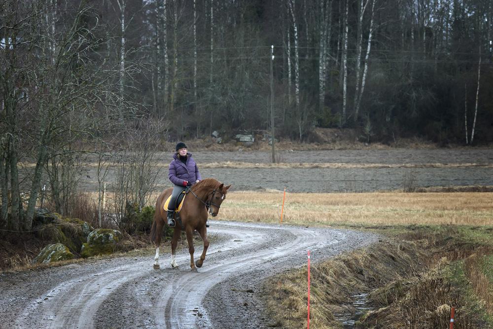 Ridturerna med hästen Olympic Joy är en skön kontrast till skrivbordsarbetet på ett kommunkansli, säger Christina Båssar som har haft hästar i nästan hela sitt liv. Foto: Johannes Tervo