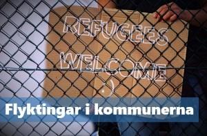 2015-11-flyktingar